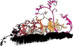 blom-