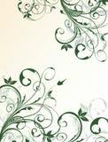 blom- abstrakt bakgrund Arkivfoto