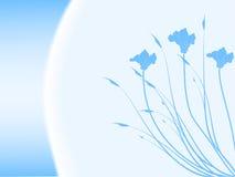 blom- abstrakt bakgrund Arkivfoton