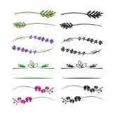 Blom- avdelar- och gränsbeståndsdeluppsättning vektor illustrationer