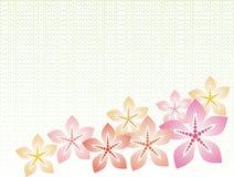 blom- bakgrund Arkivbild