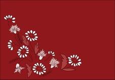 blom- bakgrund Royaltyfri Fotografi