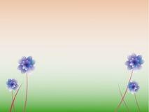 blom- bakgrund. Royaltyfria Bilder