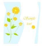Blom- bakgrund. Arkivbilder