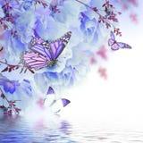 Blom- bakgrund av rosor Arkivfoto