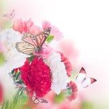 Blom- bakgrund av rosor Arkivbild