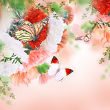 Blom- bakgrund av rosor Arkivbilder