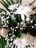 Blom- bakgrund f royaltyfri fotografi