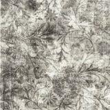 Blom- bakgrund för Grungy antik tappning Royaltyfri Foto