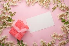 Blom- bakgrund för vår med gåvan, textur och tapeten Plana blommor för vit blomma på ett ljust - rosa bakgrund, bästa sikt, kopie arkivbilder