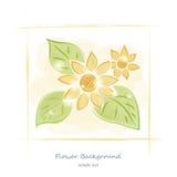 Blom- bakgrund för vattenfärgteckningsvektor Royaltyfri Foto