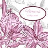 Blom- bakgrund med hand drog blommor. Vektor EPS10. Royaltyfria Foton