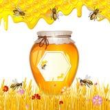 Blom- bakgrund med honung Royaltyfria Bilder