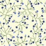 Blom- bakgrund med små blommor Royaltyfri Fotografi