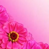 Blom- bakgrund med textur Royaltyfri Bild