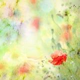 Blom- bakgrund med vattenfärgvallmor Arkivbilder