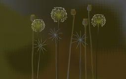 Blom- bakgrund, poppys och maskrosor - skrivbords- tapet vektor illustrationer