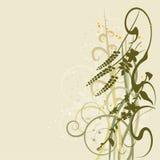 Blom- bakgrund som blommar blommor Royaltyfri Bild