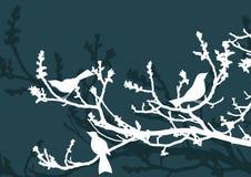 blom- bakgrundsfåglar vektor illustrationer
