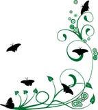 blom- bakgrundsfjärilar Arkivbild