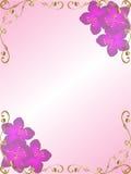 blom- bakgrundskanthörn Royaltyfria Bilder