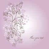 blom- bakgrundsskönhet Royaltyfri Fotografi