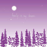Blom- bakgrundsskönhet i mina drömmar Royaltyfri Fotografi