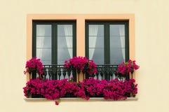 blom- balkong Royaltyfri Foto