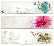 blom- baner royaltyfri illustrationer