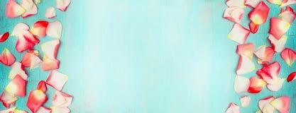Blom- baner med blommakronbladet på sjaskig chic bakgrund för turkosblått, bästa sikt arkivfoton
