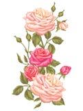 Blom- beståndsdel med tappningrosor Dekorativa retro blommor Avbilda för att gifta sig inbjudningar, romantiska kort, häften royaltyfri illustrationer