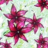 blom- beståndsdelar för fragmentvattenfärgbakgrund Royaltyfria Bilder