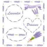 Blom- beståndsdelar för logo eller dekor Lavendelsymbolsuppsättning: blommor kalligrafi, blom- beståndsdelar vektor illustrationer