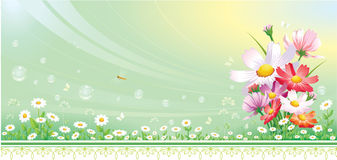 blom- bidesign Royaltyfria Bilder