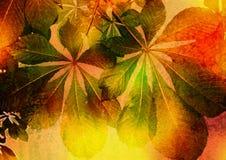 blom- bild stylized tappning Fotografering för Bildbyråer