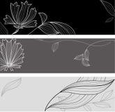 blom- blomma för kort Arkivfoto