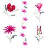 blom- blommatulpan för element royaltyfri illustrationer