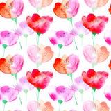 blom- blommor mönsan den seamless vallmon Royaltyfri Bild