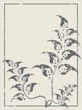 Blom- borste Royaltyfria Foton