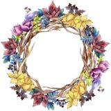 Blom- botaniska blommor för bukettsammansättning Uppsättning för vattenfärgbakgrundsillustration Fyrkant för ramgränsprydnad royaltyfri illustrationer