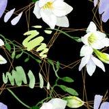 Blom- botaniska blommor f?r vit freesia Upps?ttning f?r vattenf?rgbakgrundsillustration Seamless bakgrund m?nstrar royaltyfri illustrationer