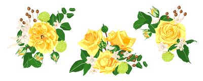 Blom- bröllopuppsättning Vektorrosbukett stock illustrationer