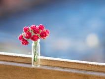 Blom- bukett för rosa rosor med mjuk bakgrund royaltyfri bild