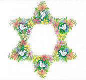 Blom- davidsstjärna Arkivfoto