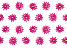 blom- dekorativ modell Royaltyfria Bilder
