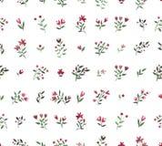 Blom- dekorativ modell för vattenfärg Royaltyfri Bild