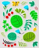 blom- dekorativa element många ställde in Blomma- och sidasamling Vektorillustration w Arkivfoto