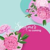 Blom- design för Hello sommar med rosa pionblommor Botanisk bakgrund för affischen, baner som gifta sig inbjudan vektor illustrationer
