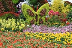 Blom- design i vår Royaltyfria Bilder