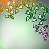 Blom- designbakgrund Arkivbild